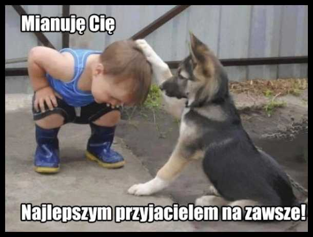 W dzisiejszych czasach można liczyć tylko na psa