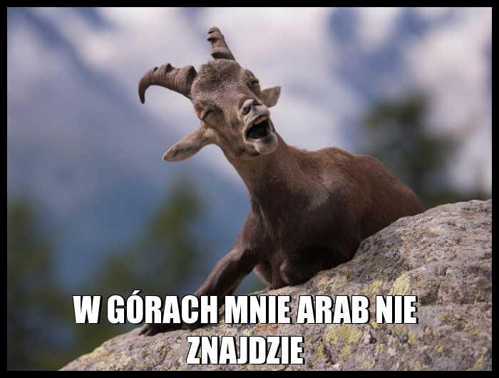 W górach mnie arab nie znajdzie