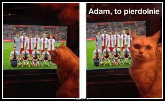 Adam to pierdolnie