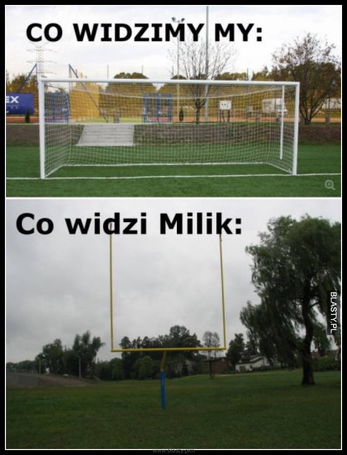 Co widzimy my vs co widzi milik