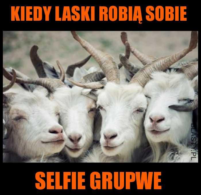 Kiedy laski robią selfie grupwe