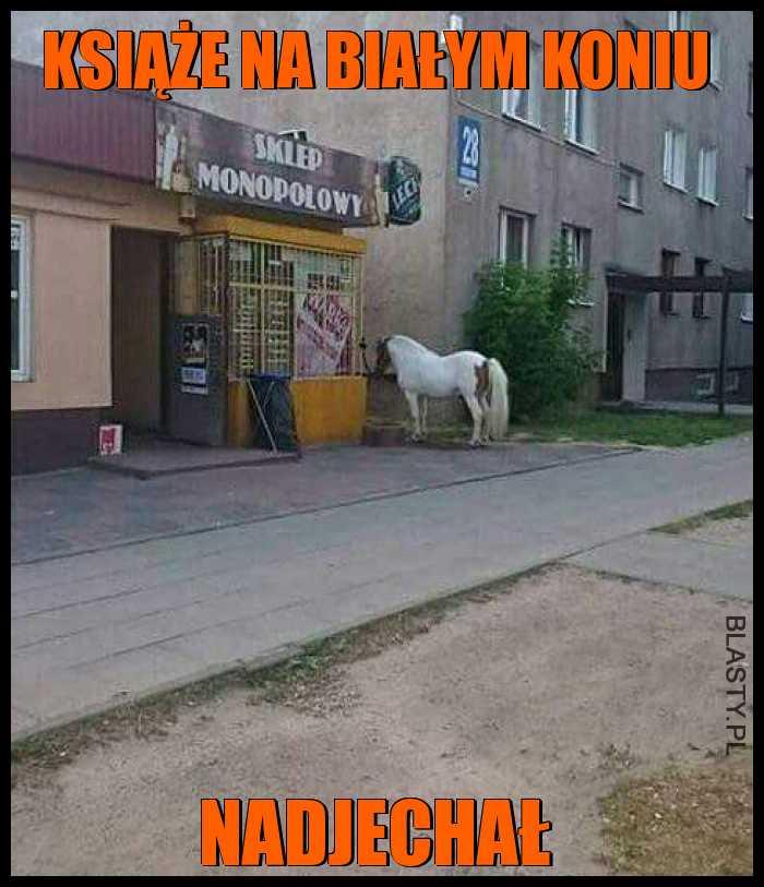 Książe na białym koniu