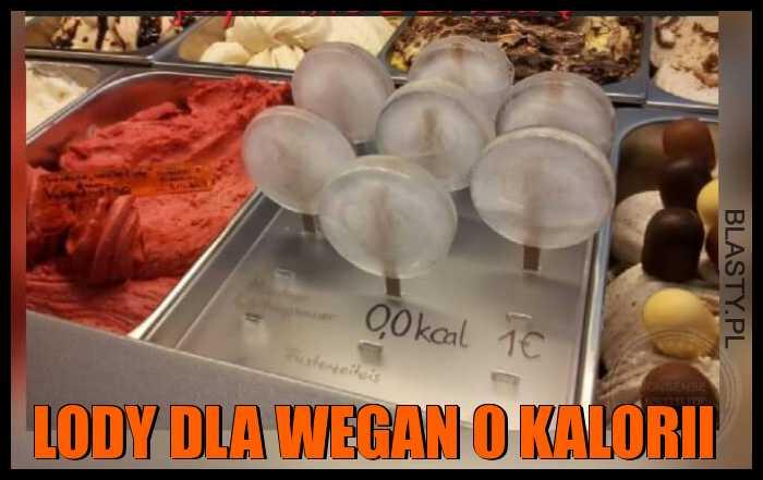 Lody dla wegan 0 kalorii
