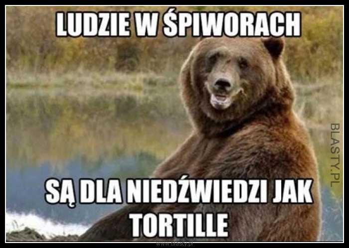 Ludzie w śpiworach są dla niedźwiedzi jak tortille