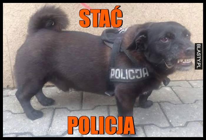 Stać policja