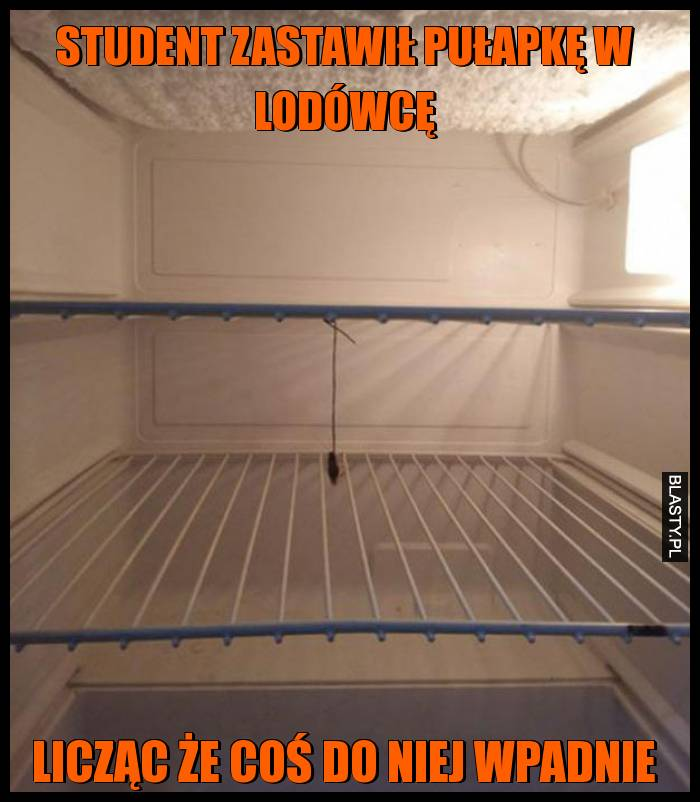Student zastawił pułapkę w lodówcę