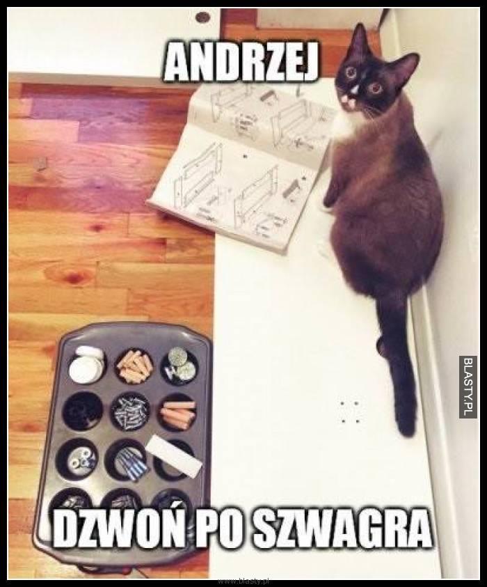 Andrzej - dzwoń po szwagra