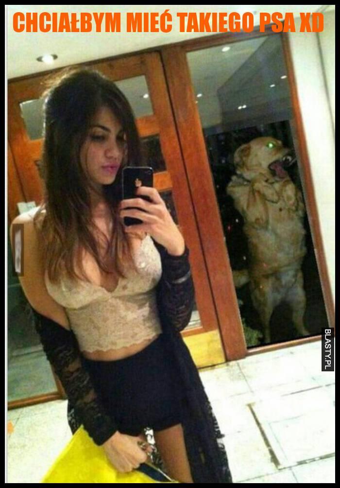 Chciałbym mieć takiego psa xD