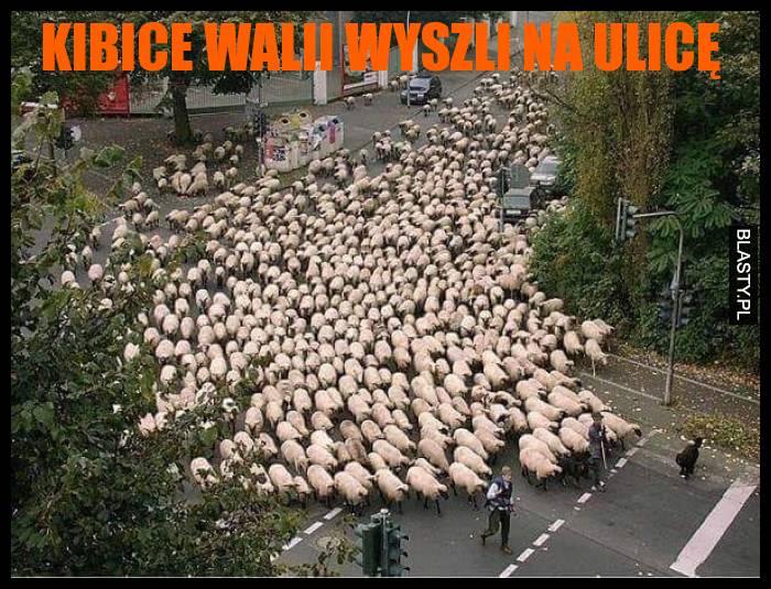 Kibice Walii wyszli na ulicę