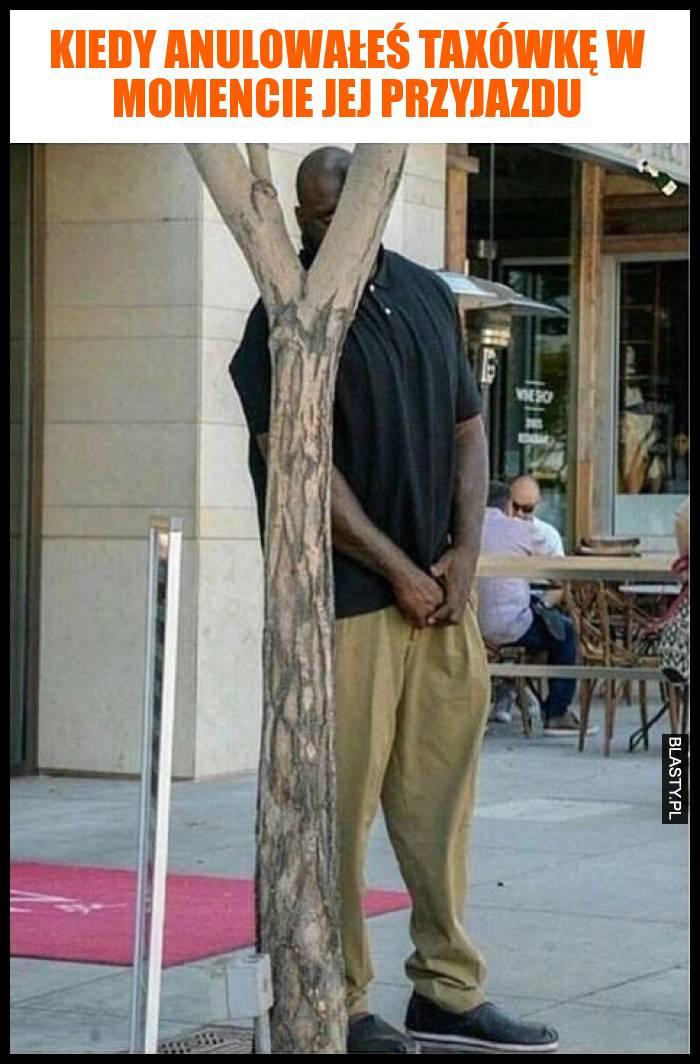 Kiedy anulowałeś taxówkę w momencie jej przyjazdu