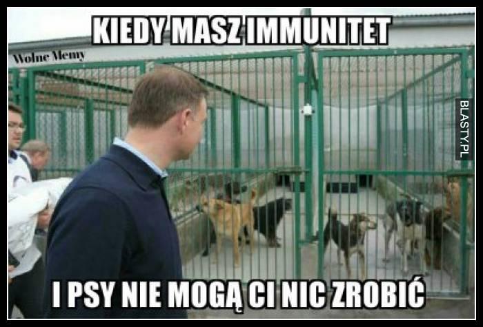 Kiedy masz immunitet i psy nie mogą Ci nic zrobić