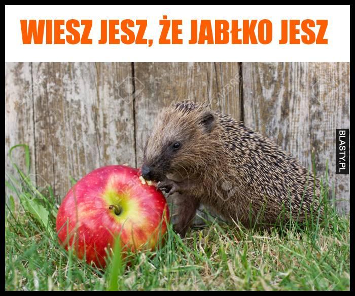 Wiesz jesz, że jabłko jesz