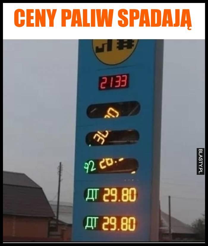 Ceny paliw spadają