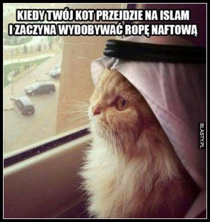 Kiedy Twój kot przejdzie na Islam i zaczyna wydobywać ropę naftową