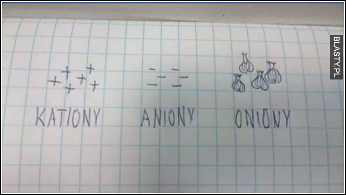 Kationy aniony oniony
