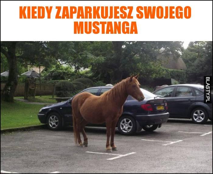 Kiedy zaparkujesz swojego mustanga