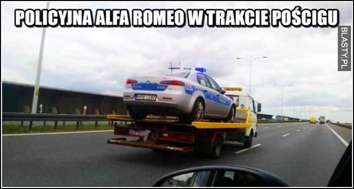 Policyjna alfa romeo podczas pościgu