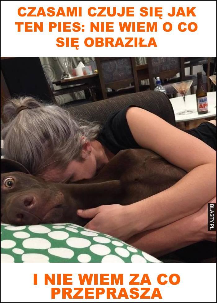 Czasami czuje się jak ten pies: nie wiem o co się obraziła