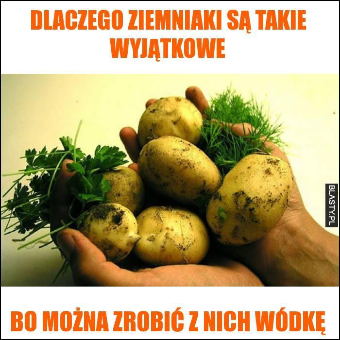 Dlaczego ziemniaki są takie wyjątkowe