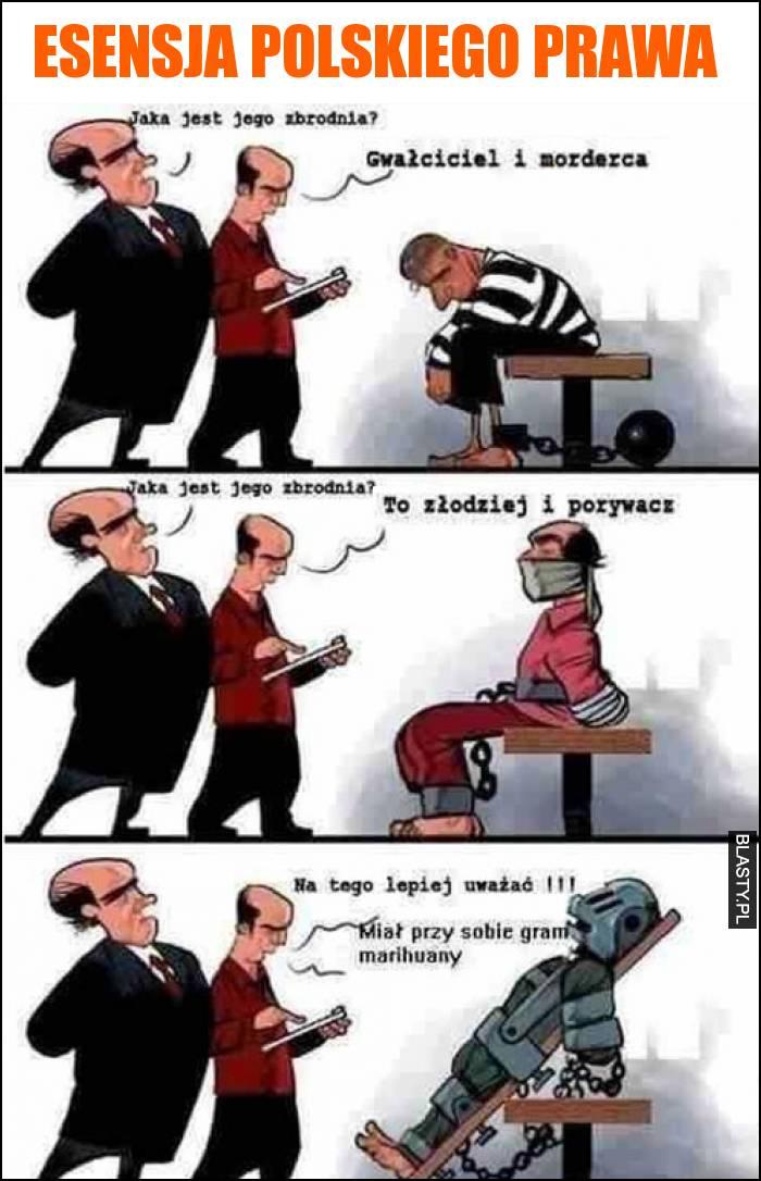 esensja polskiego prawa