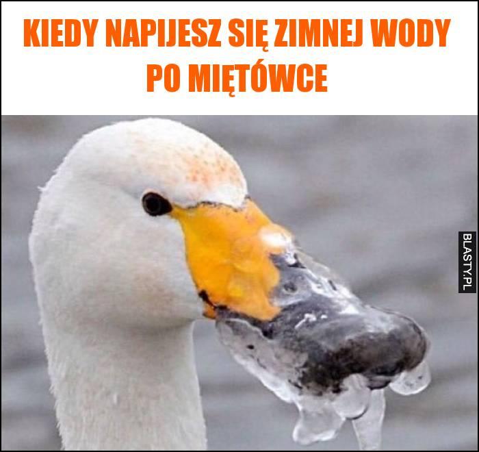 Kiedy napijesz się zimnej wody po miętówce