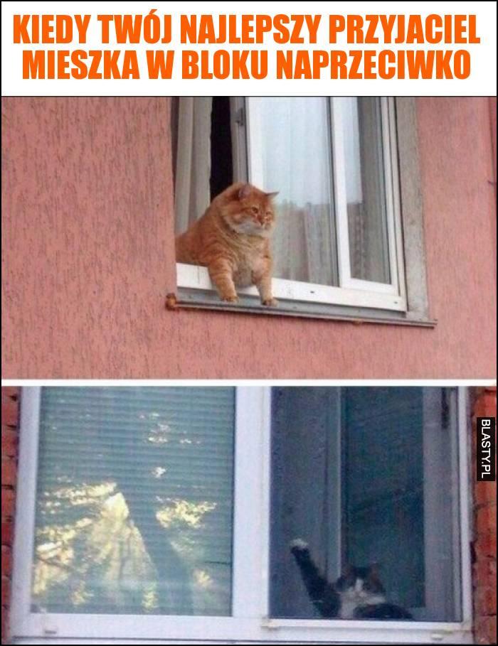 Kiedy Twój najlepszy przyjaciel mieszka w bloku naprzeciwko