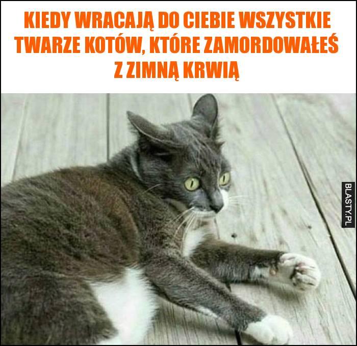 Kiedy wracają do Ciebie wszystkie twarze kotów, które zamordowałeś z zimną krwią
