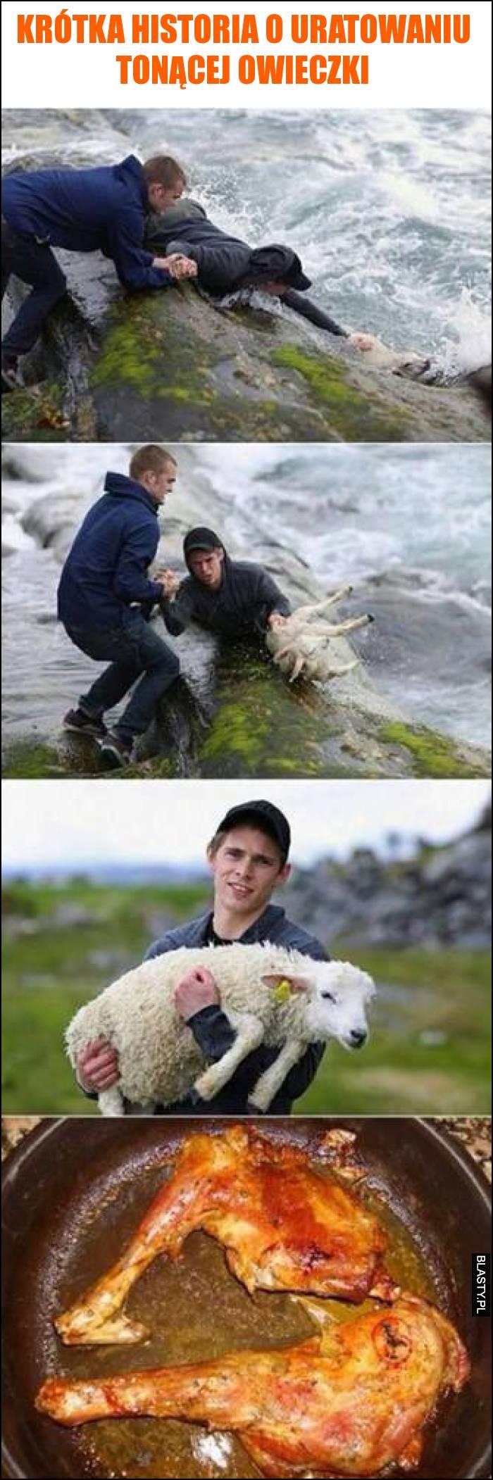 Krótka historia o uratowaniu tonącej owieczki