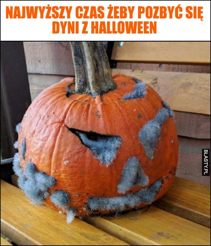 Najwyższy czas żeby pozbyć się dyni z halloween