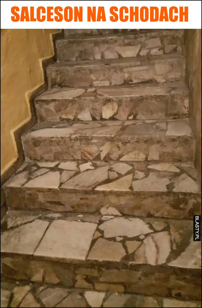 salceson na schodach