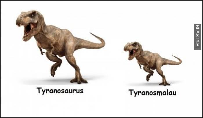 Tyranosaurus vs tyranosmalou