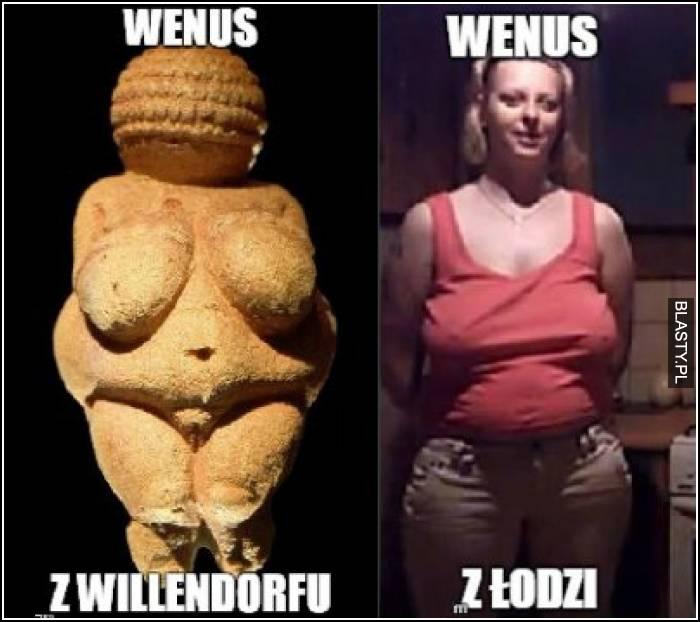 Wenus z Willendorfu vs Wenus z Łodzi