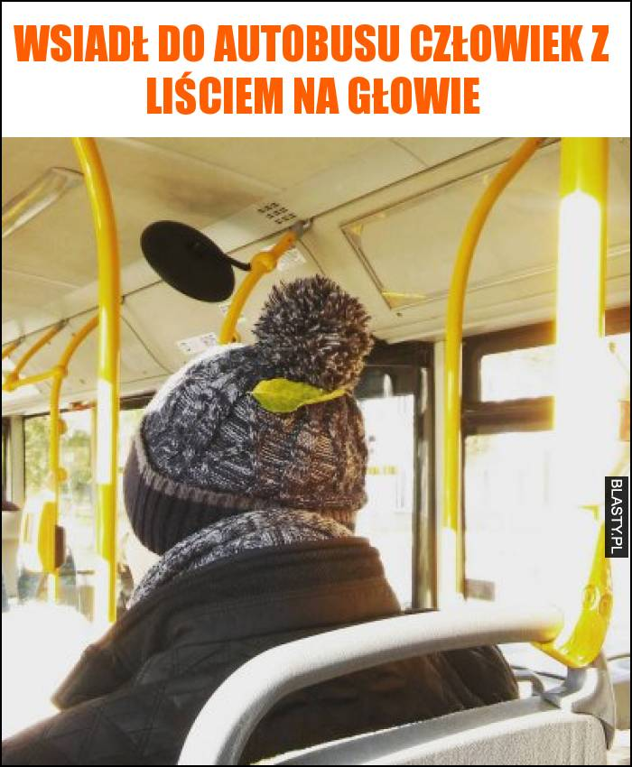 Wsiadł do autobusu człowiek z liściem na głowie