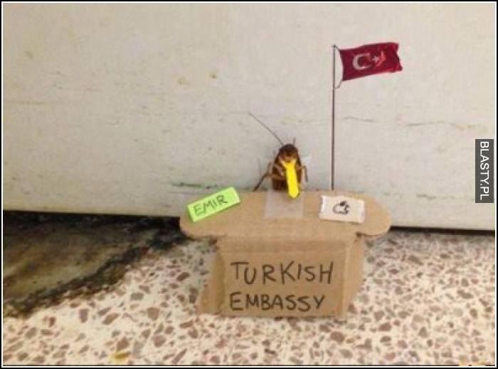 Ambasada Turecka