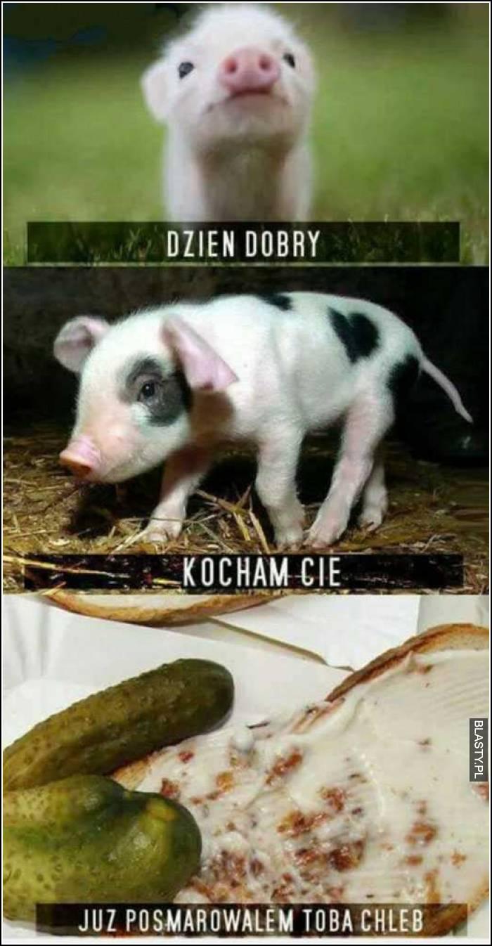Dzień Dobry Kocham Cię Memy Gify I śmieszne Obrazki Facebook