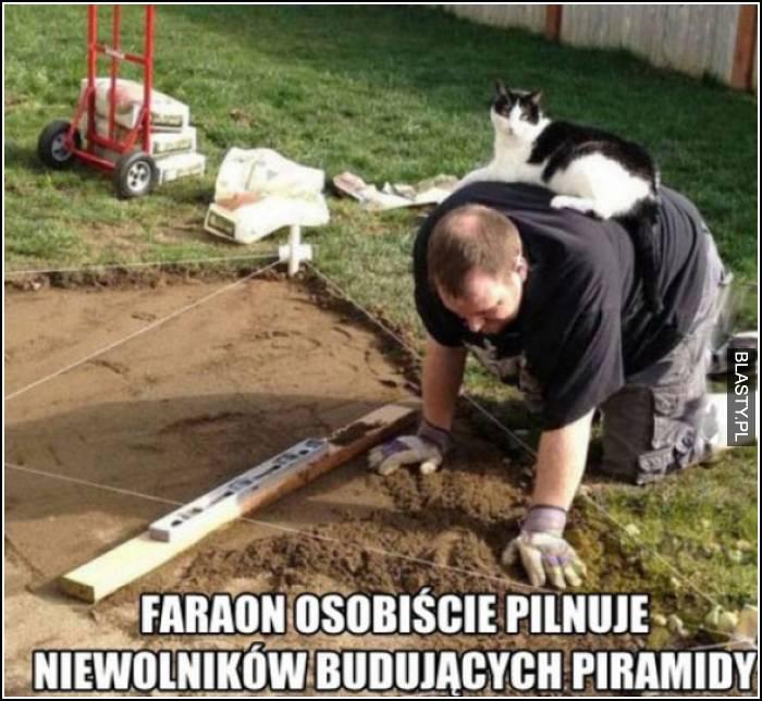 faraon osobiście nadzouje budowy piramidy