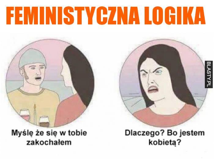 feministyczna logika