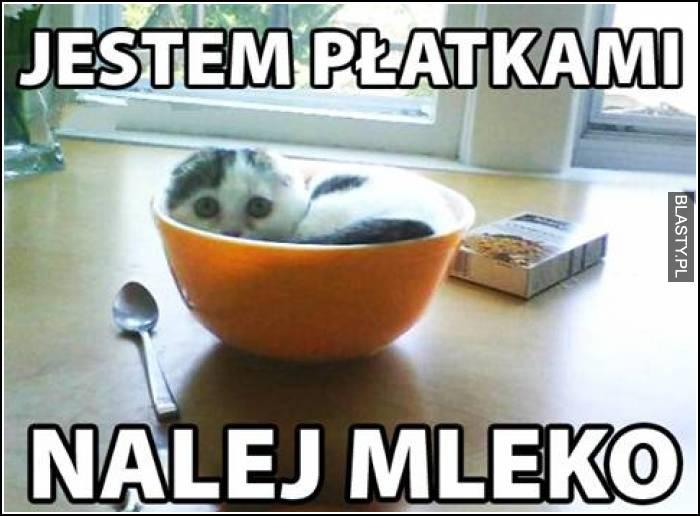 Jestem płatkiem nalej mleko
