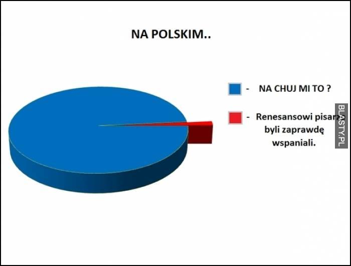 język polski w szkołach