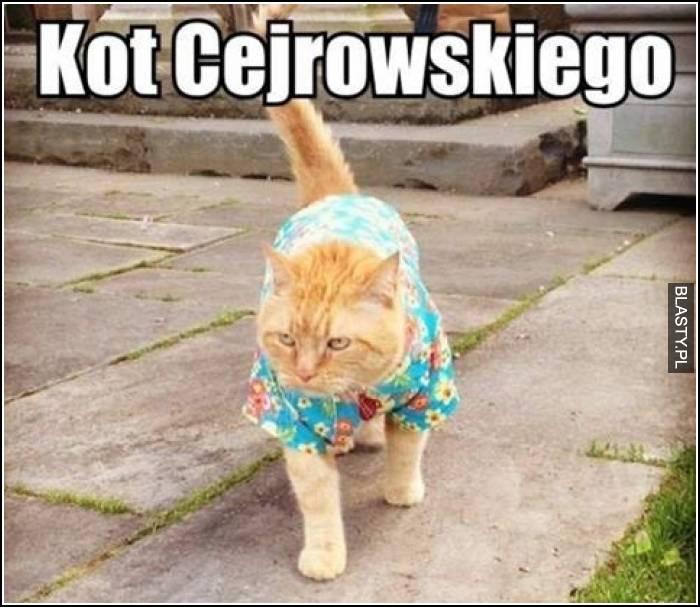 Kot Cejrowskiego