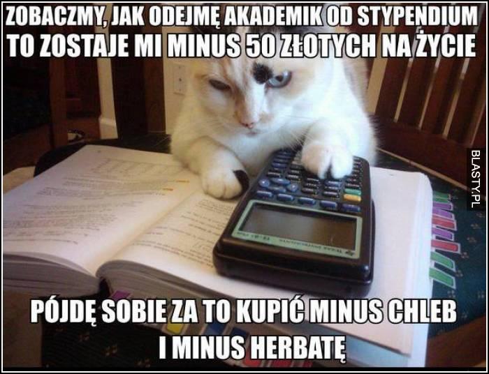 Studia takie są