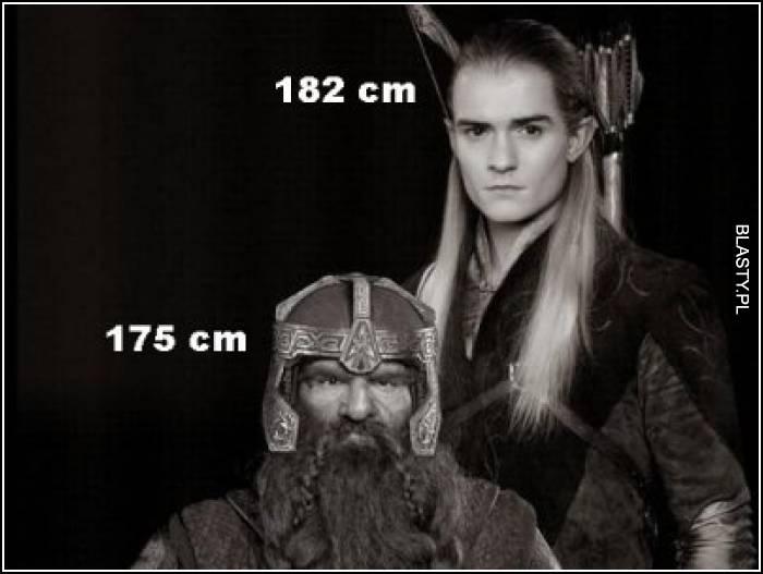 182 cm vs 175