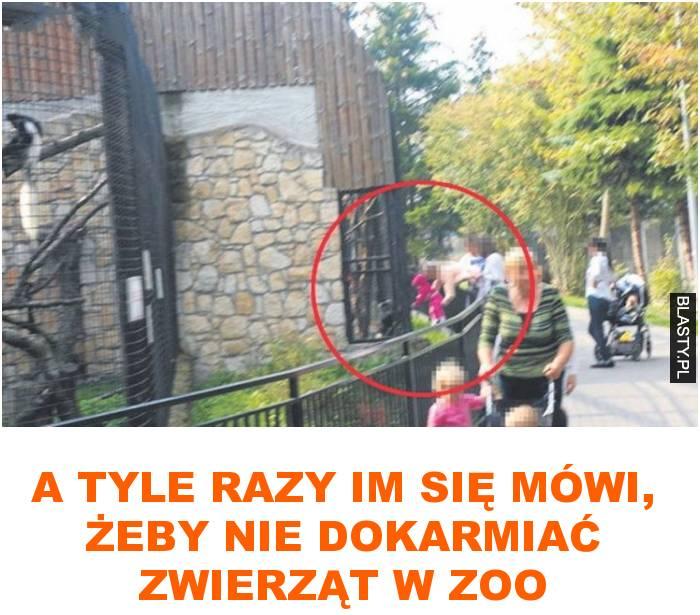 A tyle razy im się mówi, żeby nie dokarmiać zwierząt w zoo