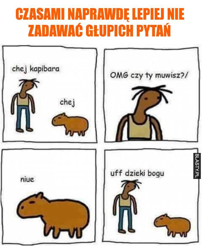 chej kapibara