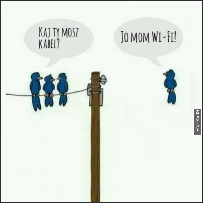 Kaj Ty masz kabel