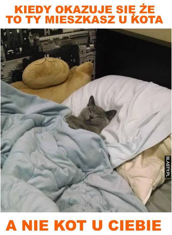 Kiedy okazuje się że to ty mieszkasz u kota