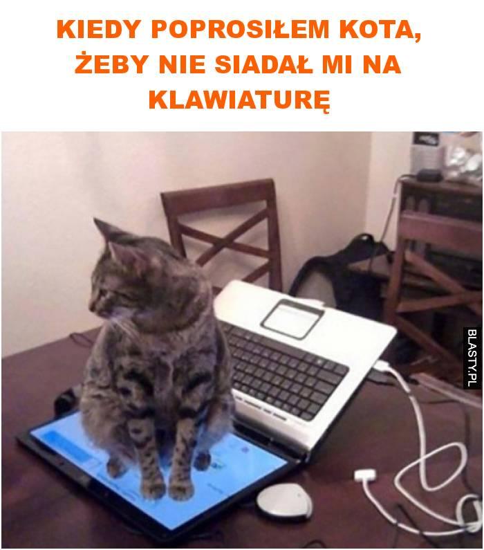 Kiedy poprosiłem kota, żeby nie siadał mi na klawiaturę