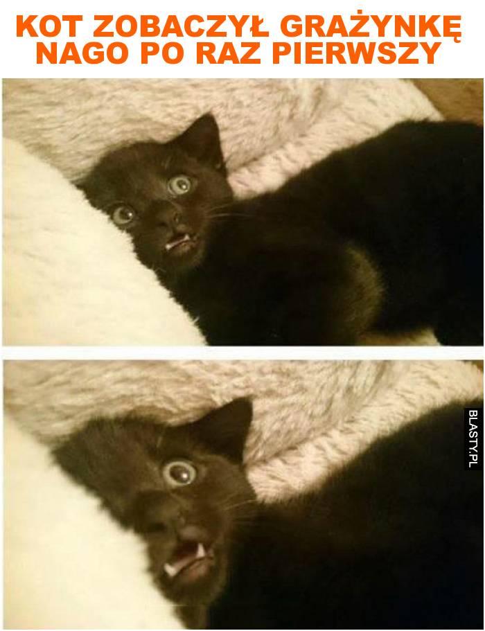 kot zobaczył grażynkę nago po raz pierwszy