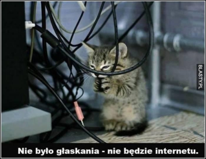 nie było głaskania nie będzie internetu