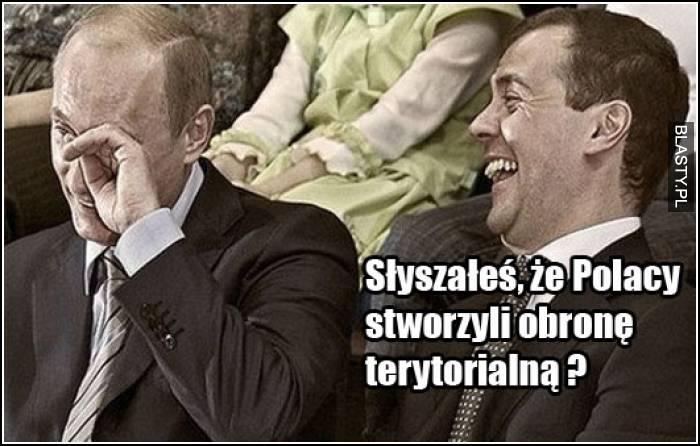 obrona terytorialna polski